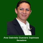 3. Senadora Ana Gabriela Guevara .jpg