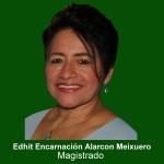 Edhit Encarnación Alarcon Meixuero