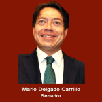 4. Senador Mario Delgado .jpg