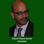 8. Diputado David Razu Aznar .jpg